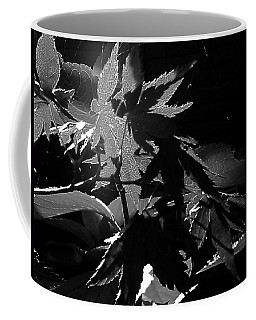 Coffee Mug featuring the photograph Angels Or Dragons B/w by Martin Howard