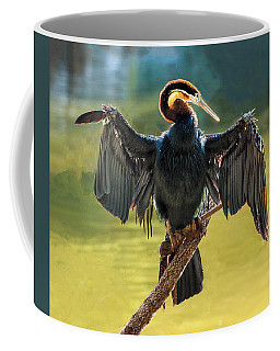 Anhinga Drying His Wings Coffee Mug