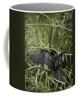 Anhinga Papa Coffee Mug