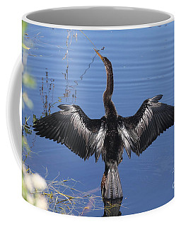 Coffee Mug featuring the photograph Anhinga  Sunbathing by Christiane Schulze Art And Photography