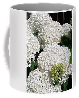 Annabelle Hydrangea  Coffee Mug