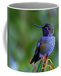 Annas Hummingbird Coffee Mug by Randy Hall