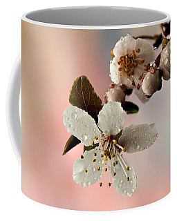 Coffee Mug featuring the photograph Announcing Spring by Mary Jo Allen