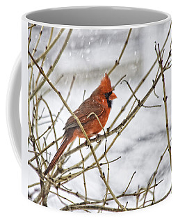 Another Snowy Day Coffee Mug