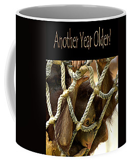 Coffee Mug featuring the photograph Another Year Older by Carolyn Marshall