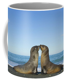 Antarctic Fur Seal Pups Kissing Coffee Mug
