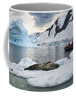 Antarctic Serenity... Coffee Mug