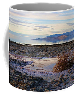 Coffee Mug featuring the photograph Antelope Island - Tumble Weed by Ely Arsha