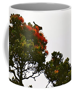 Apapane Atop An Orange Ohia Lehua Tree  Coffee Mug