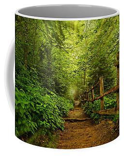 Appalachian Trail At Newfound Gap Coffee Mug by Stephen Stookey