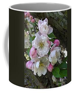 Apple Blossom Bouquet Coffee Mug