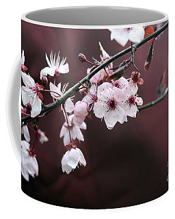 Apple Blossom In Rain Coffee Mug