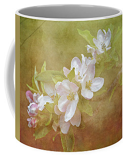 Apple Blossom Spring Coffee Mug by TnBackroadsPhotos
