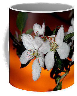 Apple Blossom Sunrise I Coffee Mug
