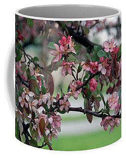 Coffee Mug featuring the photograph Apple Blossom Time by Kay Novy