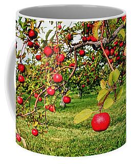 Apple Orchard Coffee Mug by Pat Cook