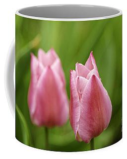 Apple Pink Tulips Coffee Mug
