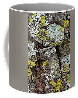 Apple Tree Lichens Coffee Mug