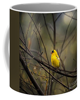 April Showers In Square Format Coffee Mug