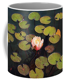 Aquatic Garden With Water Lily Coffee Mug