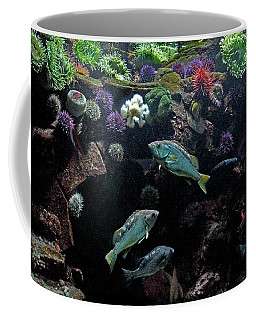 Coffee Mug featuring the photograph Aquatic Life by Peggy Collins