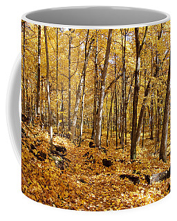 Arboretum Trail Coffee Mug by Steven Ralser
