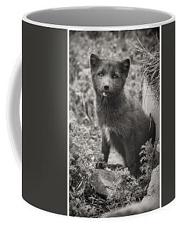 Arctic Fox Cub Coffee Mug