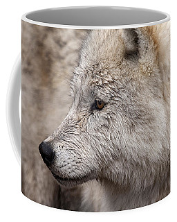 Arctic Wolf Coffee Mug by Eunice Gibb