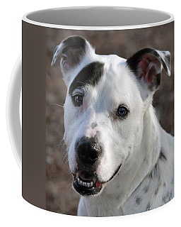 Coffee Mug featuring the photograph Are You Looking At Me? by Savannah Gibbs