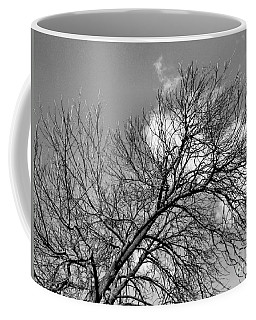 Coffee Mug featuring the photograph Ash And Light by Robyn King