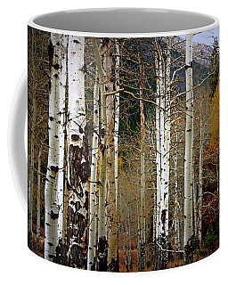 Coffee Mug featuring the photograph Aspen In The Rockies by Lynn Sprowl
