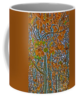 Coffee Mug featuring the photograph Aspen Leaves In The Fall by Mae Wertz