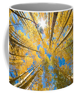 Aspen Trees Looking Up Coffee Mug