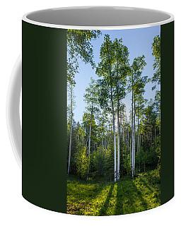 Aspens At Sunrise 1 - Santa Fe New Mexico Coffee Mug