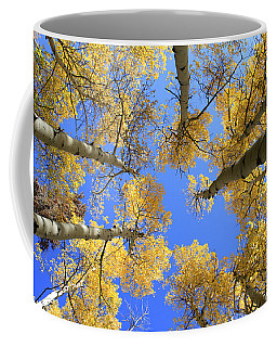 Aspens Skyward Coffee Mug