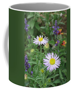 Asters In Close-up Coffee Mug