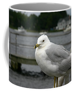 Coffee Mug featuring the photograph At The Boat Landing by Denyse Duhaime
