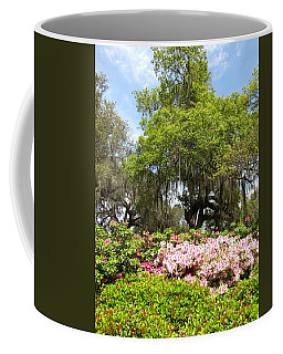 Coffee Mug featuring the photograph At The Park by Beth Vincent