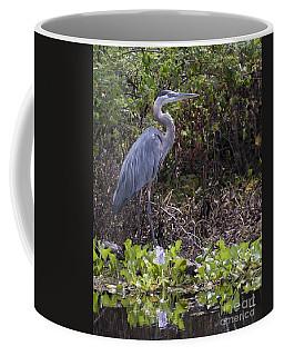 Atchafalaya Swamp Blue Heron Coffee Mug