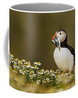 Atlantic Puffin Carrying Fish Skomer Coffee Mug