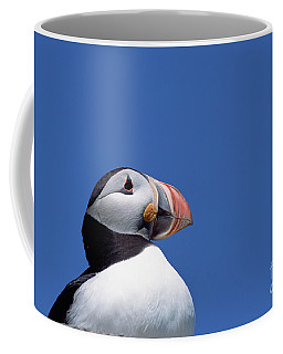 Atlantic Puffin In Breeding Colors Coffee Mug