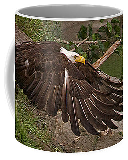 Coffee Mug featuring the photograph Attaining Lift by J L Woody Wooden