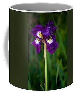 Coffee Mug featuring the photograph Attention by Penny Lisowski