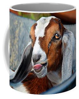 Attitude Is Everything Coffee Mug