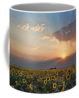 August Dreams Coffee Mug