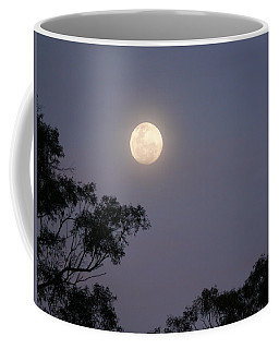Coffee Mug featuring the photograph August Moon by Evelyn Tambour