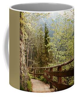 Austrian Woodland Trail And Mountain View Coffee Mug by Brooke T Ryan