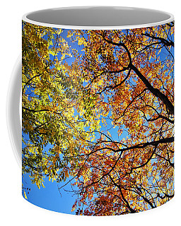 Autumn Afternoon Coffee Mug by Cricket Hackmann