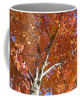 Autumn Aspen Coffee Mug