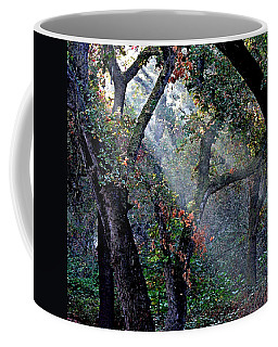 Autumn At First Light Coffee Mug